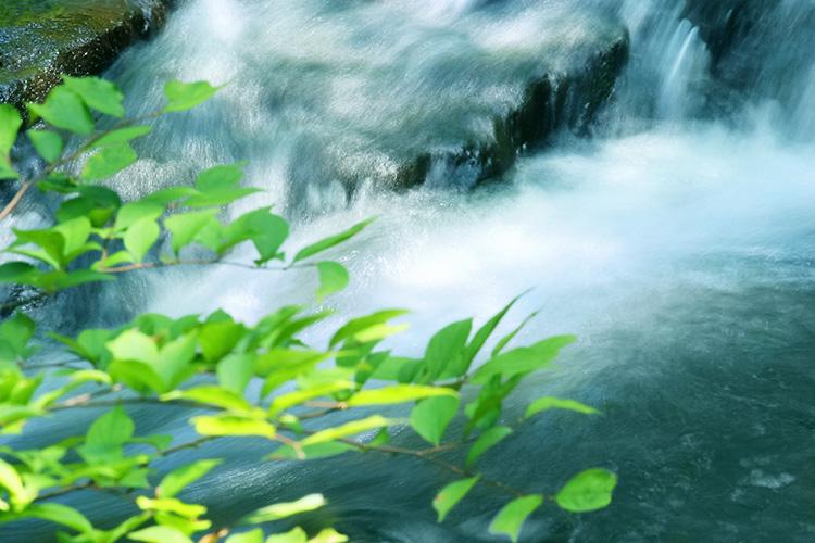 水環境の研究開発